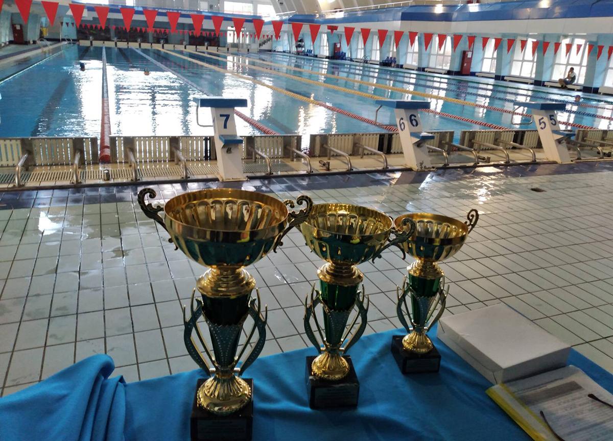 80222947 2939476809451758 5062362064987619328 o - На водных дорожках Кубани: севастопольские пловцы успешно выступили в Открытом чемпионате Кубани по плаванию