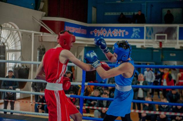 19012020 110 631x420 - В Севастополе завершилось первенство города по боксу среди юношей 2002-2003 г.р.