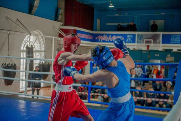 19012020 111 631x420 - В Севастополе завершилось первенство города по боксу среди юношей 2002-2003 г.р.