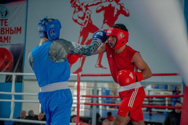 19012020 115 631x420 - В Севастополе завершилось первенство города по боксу среди юношей 2002-2003 г.р.