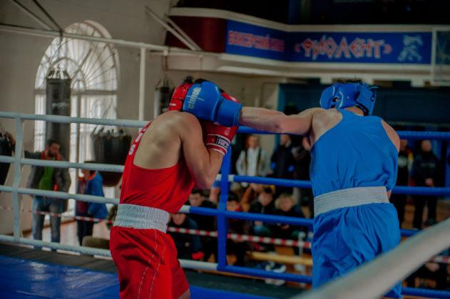 19012020 120 631x420 - В Севастополе завершилось первенство города по боксу среди юношей 2002-2003 г.р.