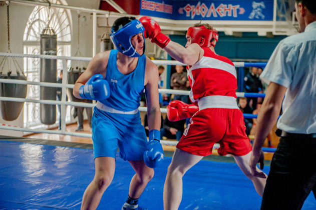19012020 122 631x420 - В Севастополе завершилось первенство города по боксу среди юношей 2002-2003 г.р.