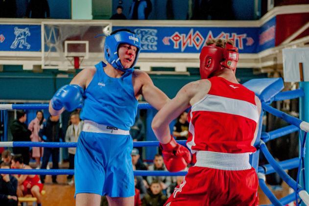 19012020 124 631x420 - В Севастополе завершилось первенство города по боксу среди юношей 2002-2003 г.р.