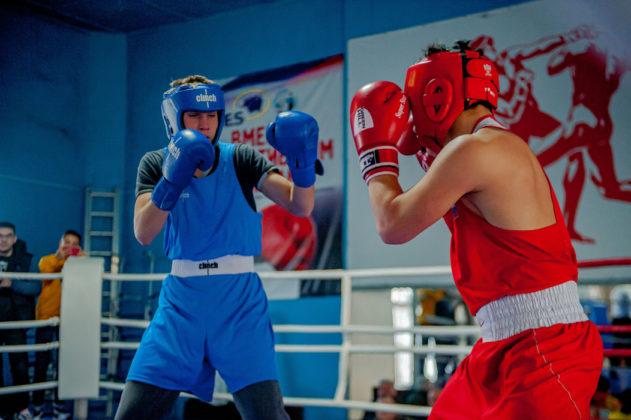 19012020 135 631x420 - В Севастополе завершилось первенство города по боксу среди юношей 2002-2003 г.р.